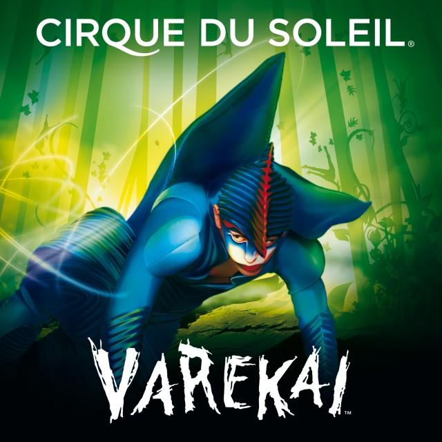 Plakat Varekai